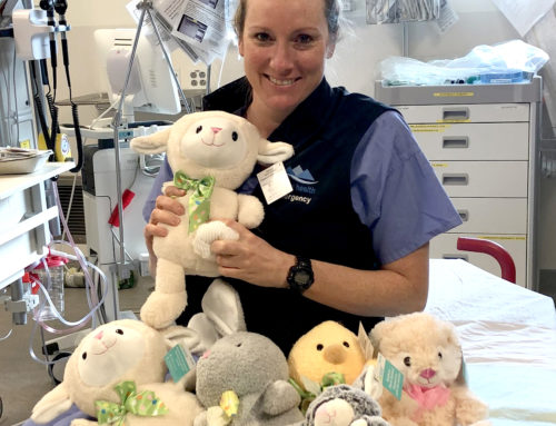Stuffed Toys for the Emergency Department